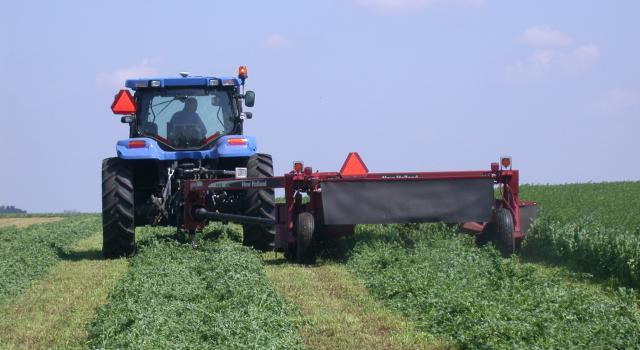 Mowing hay in the field