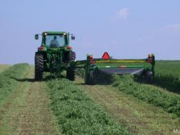 Alfalfa harvesting in the fall involves benefits vs. risks