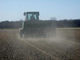 Drill planting forages