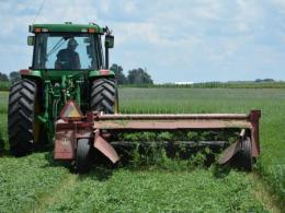 Hay mover cutting alfalfa
