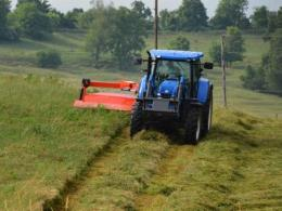 A timely first harvest is critical  quality forage.