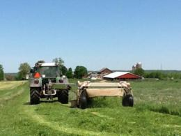 Hay mower showing wide windrows