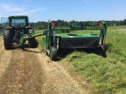 Hay mower cutting sorghum sudangrass