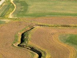 Waterway in field